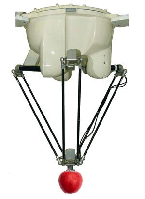 Robot Flex Picker per Ortofrutta